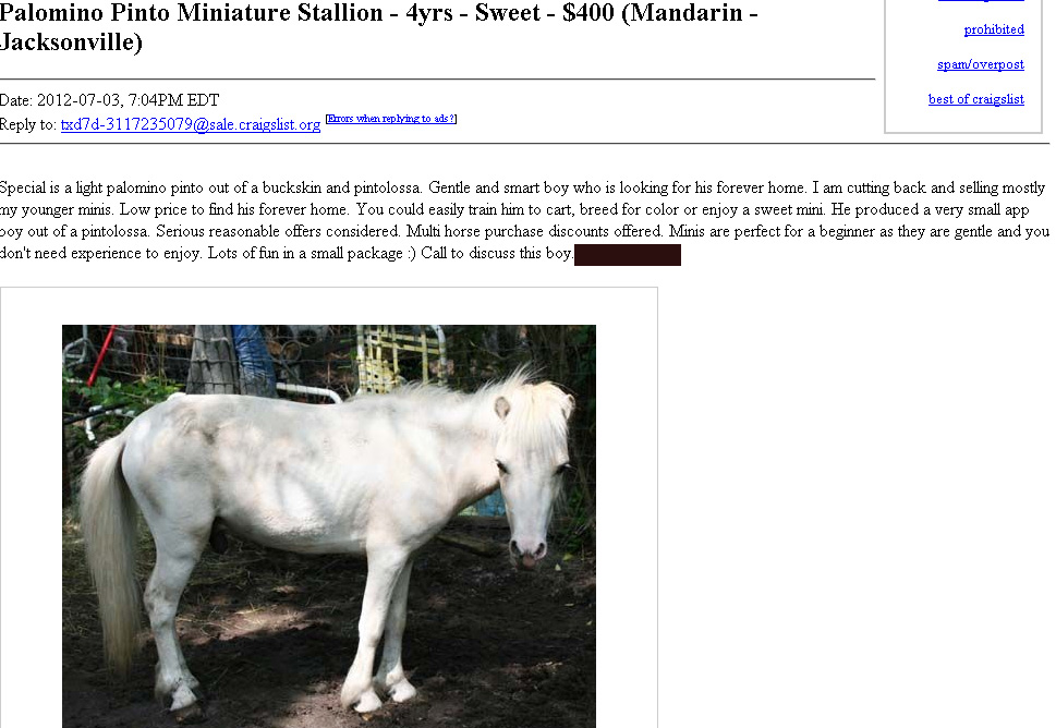 Oh My God Craigslist! or How Not to Be a Backyard Breeder